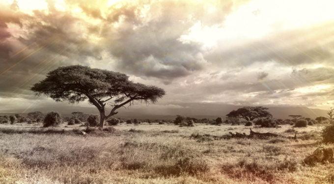 Afryka | Fajne Podróże 111