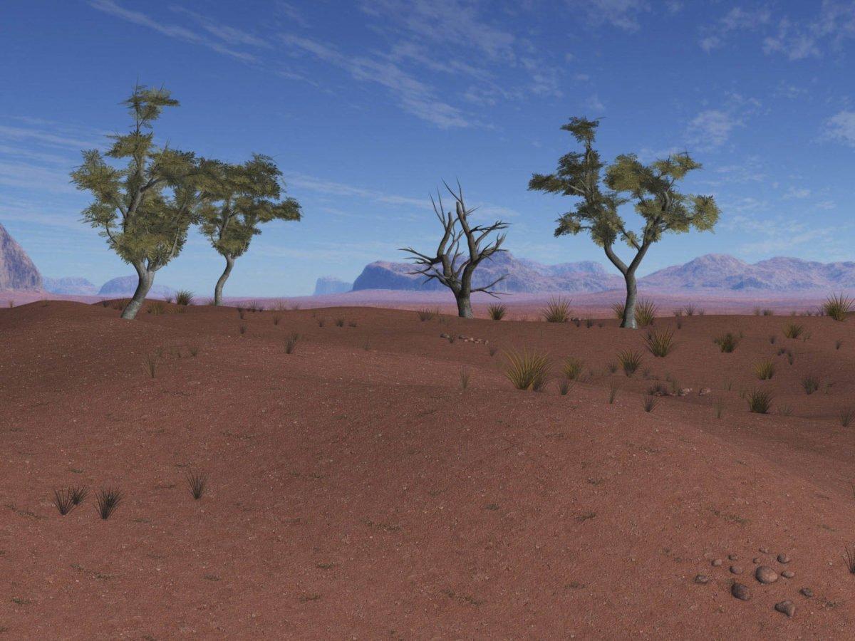Afryka   Fajne Podróże 116