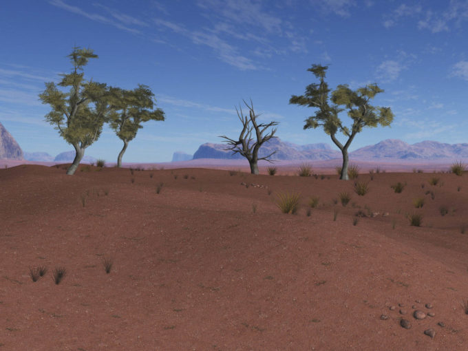 Afryka | Fajne Podróże 116