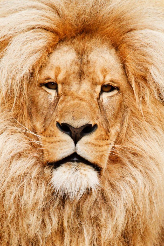 Afryka | Fajne Podróże 24