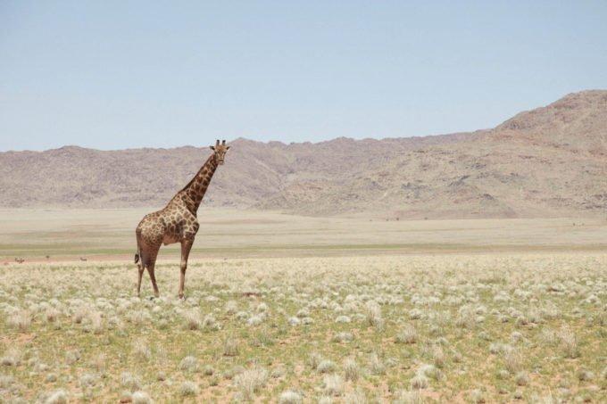 Afryka | Fajne Podróże 124