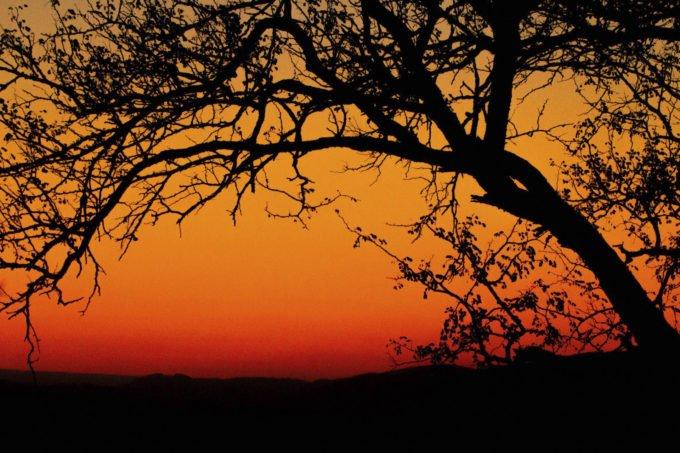 Afryka | Fajne Podróże 125
