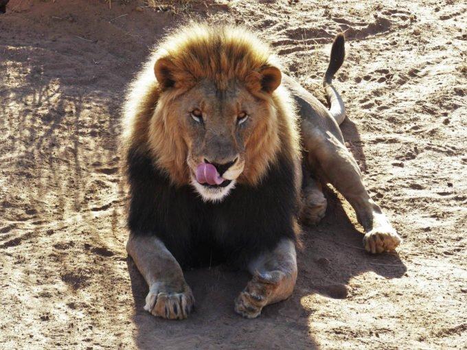 Afryka | Fajne Podróże 129