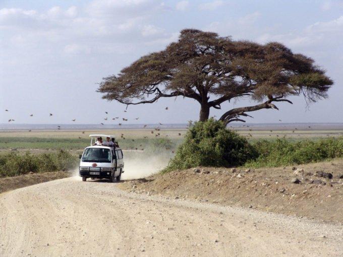 Afryka | Fajne Podróże 152