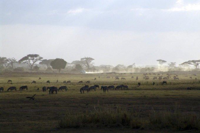 Afryka | Fajne Podróże 156