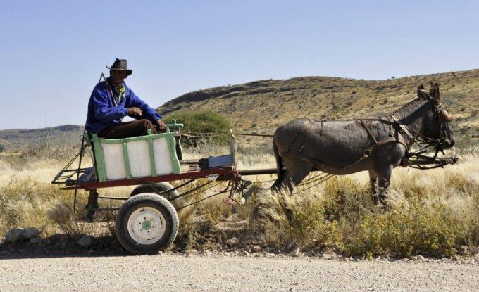 Afryka | Fajne Podróże 175