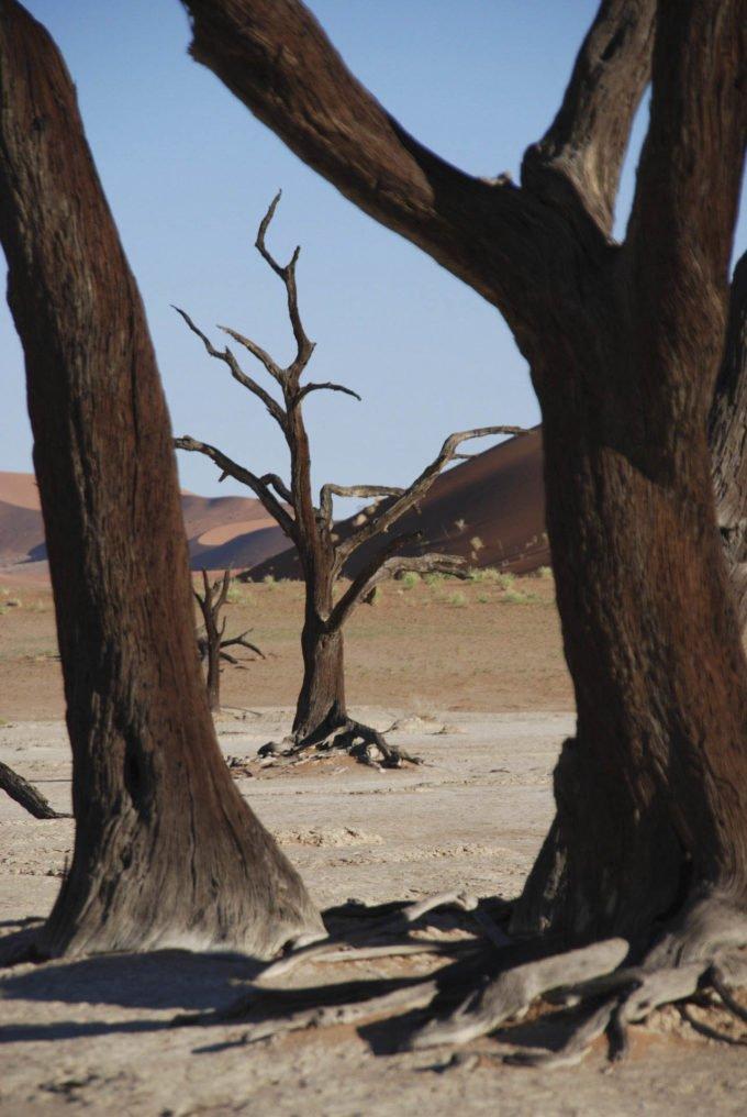 Африка | Прохладный Путешествия 177