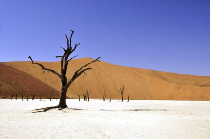 Африка | Прохладный Путешествия 181