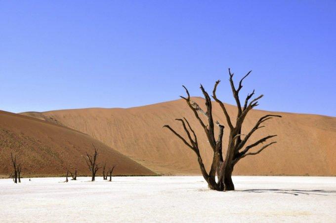 Afryka | Fajne Podróże 182