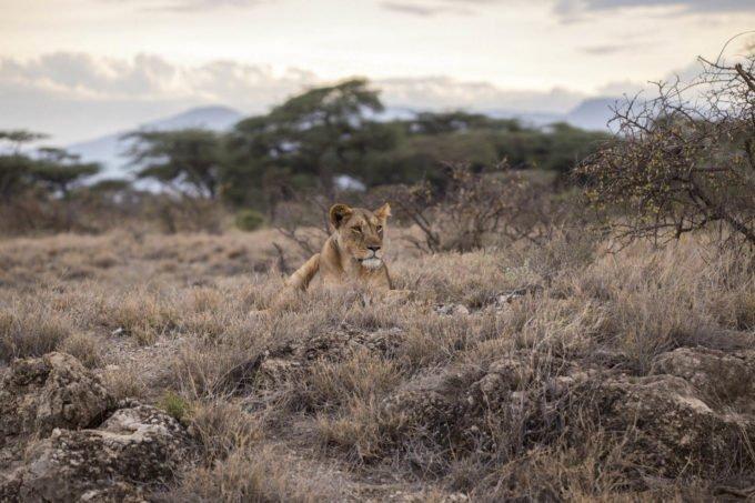 Afryka | Fajne Podróże 1