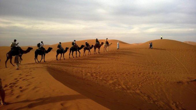Африка | Караван верблюды
