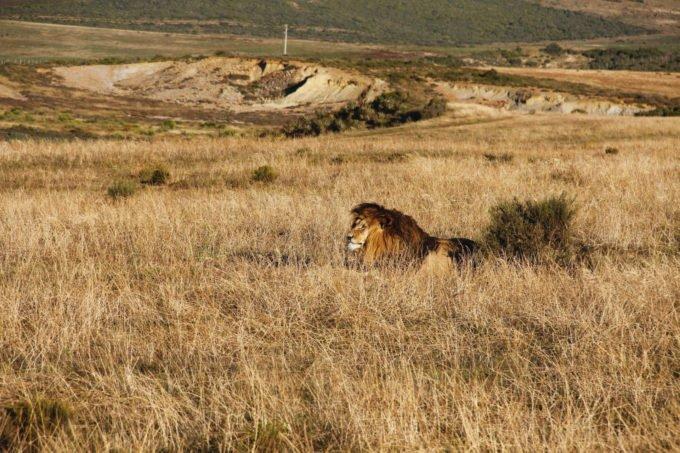 Afryka | Fajne Podróże 69