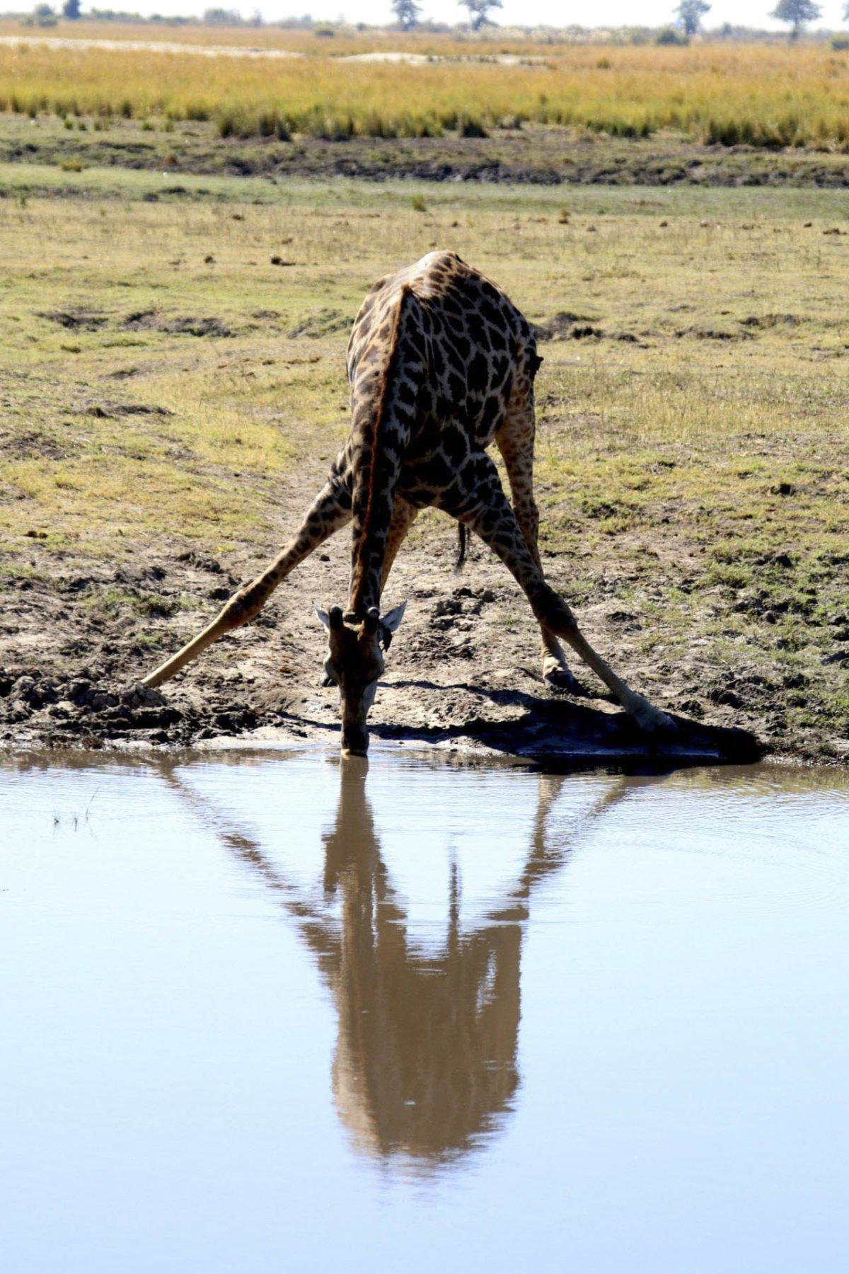 Afryka   Fajne Podróże 72