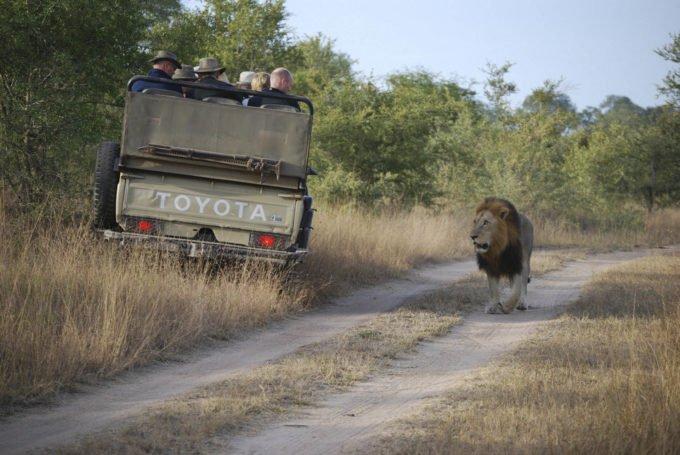 Afryka | Fajne Podróże 93