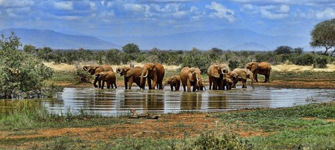 Afryka | Fajne Podróże 99