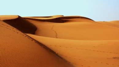 afryka pustynia