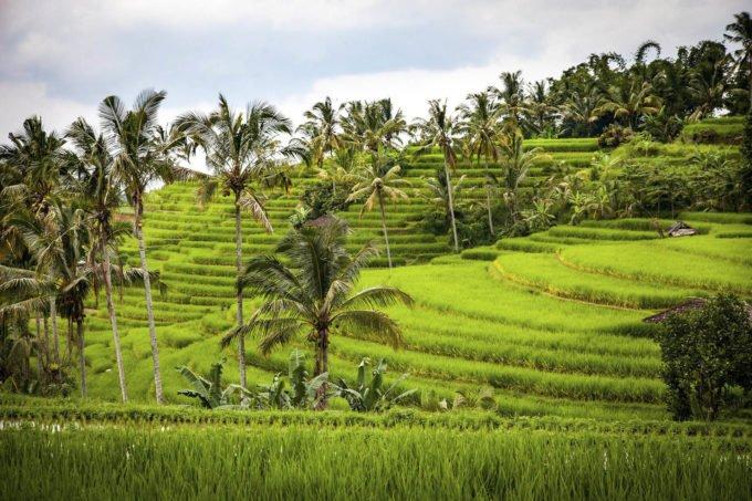 Azja | Fajne Podróże 5