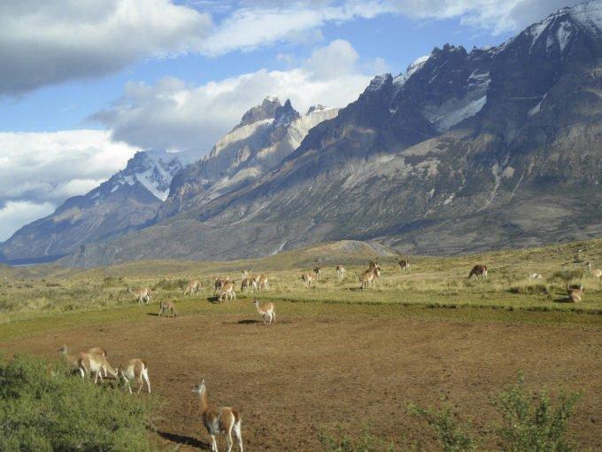 Chile | Fajne Podróże 18