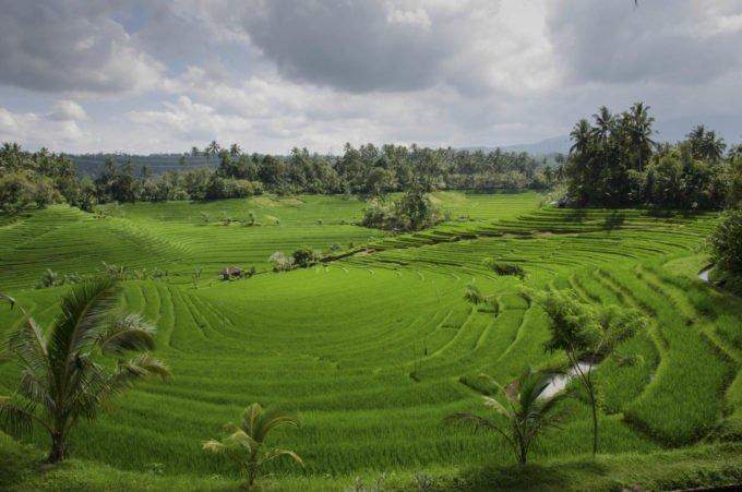 Azja | Fajne Podróże 103