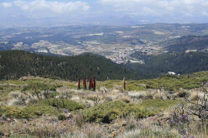 Hiszpania | Fajne Podróże 126