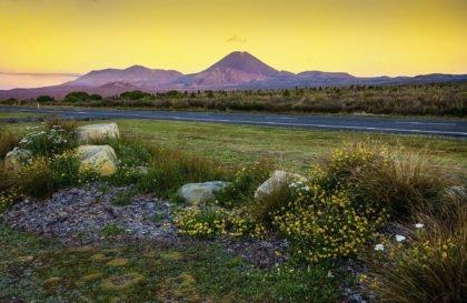50+ najlepszych zdjęć z Nowej Zelandii i ciekawostki