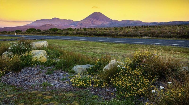 Nowa Zelandia | Fajne Podróże 45