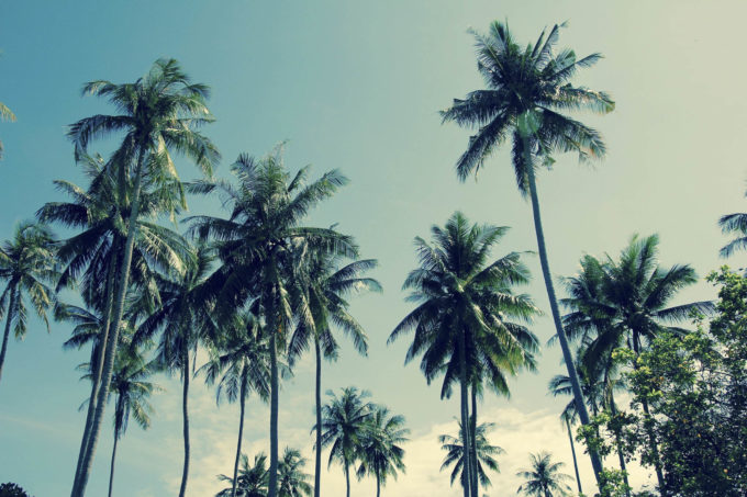 tajlandia-56