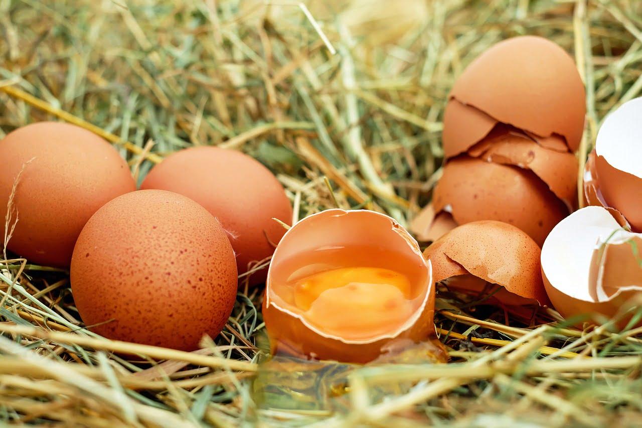 Żółtka jajek