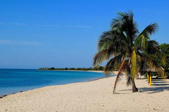 plaża palma