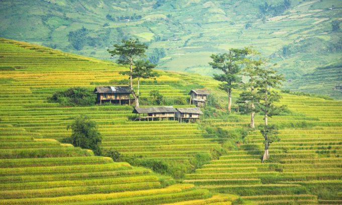 zielone wzgórza Kambodży