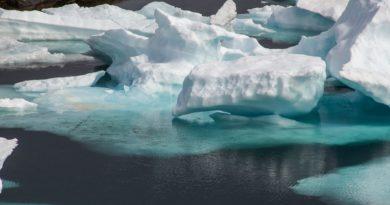 dryfujący lód
