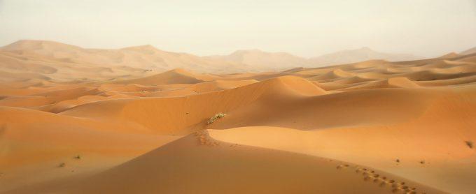 klimat na pustyni