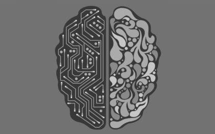 54 ciekawostki na temat ludzkiego mózgu