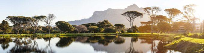 panorama RPA