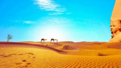 20 niezwykłych ciekawostek o Saharze dla dzieci