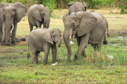 16 ciekawostek o Republice Południowej Afryki