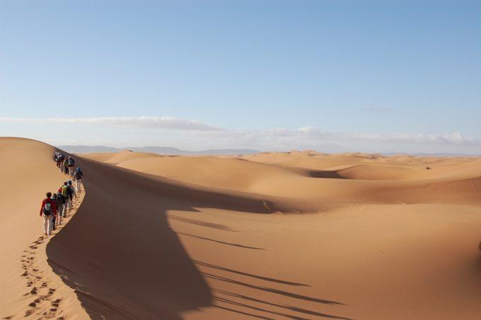 wyprawa na pustyni