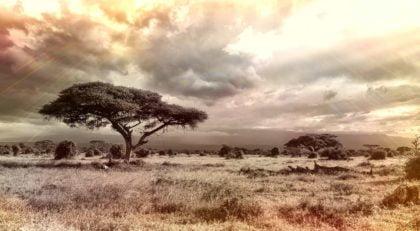 Najlepsze ciekawostki geograficzne o Afryce