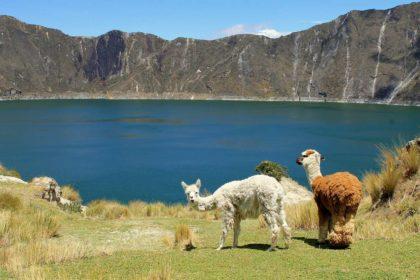 Mało znane ciekawostki oraz informacje o Ekwadorze dla dzieci
