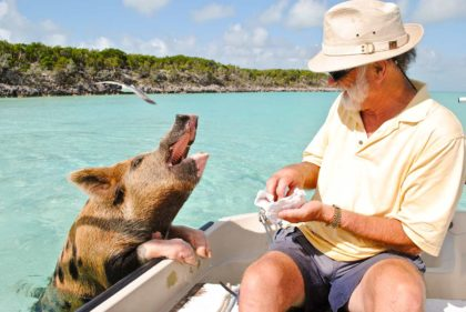 Ciekawostki o Bahamach