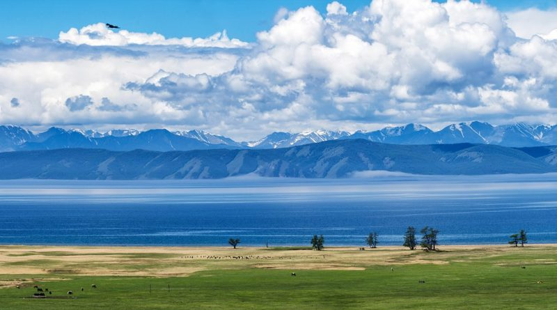 ciekawostki Mongolia