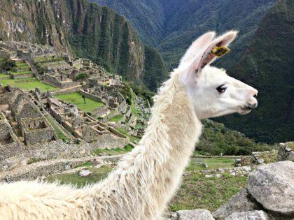 28 najlepszych ciekawostek o Peru