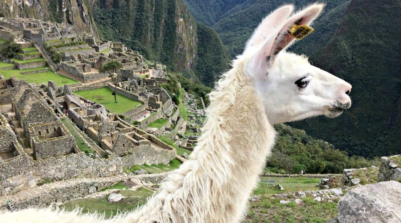 ciekawostki Peru
