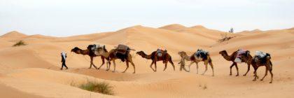 Najlepsze ciekawostki o Tunezji