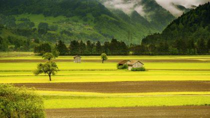 Najlepsze informacje i ciekawostki o Szwajcarii dla dzieci