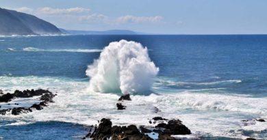 Informacje i ciekawostki o oceanie