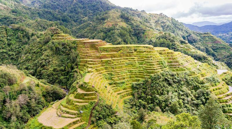 Tarasy ryżowe Banaue