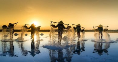 zbieranie soli w Wietnamie