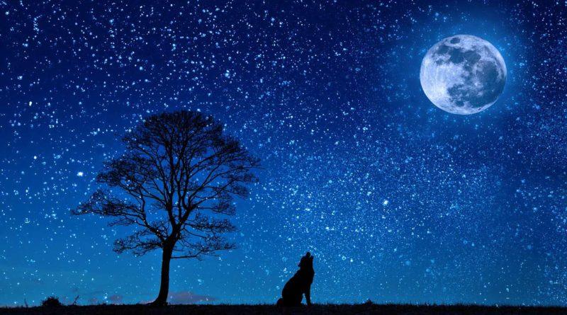 księżyc ciekawostki dla dzieci