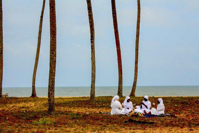 medytacja pod drzewami